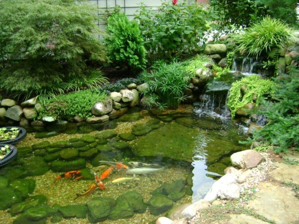 Pond Pumps - Largest Pond Supply South Of Atlanta Georgia - Southern Lawn Designs