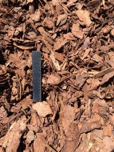 Large Pine Bark Nuggets - Ruler View